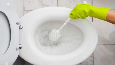 toiletbacteri n keren binnen vijf uur na schoonmaak terug mampreneur. Black Bedroom Furniture Sets. Home Design Ideas