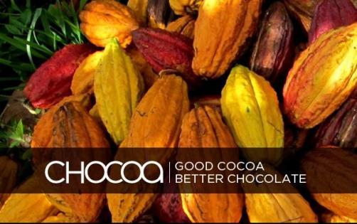 Chocoa-Festival_26869